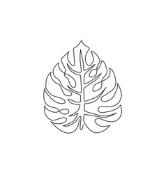 single continuous line drawing exotic tropical vector image