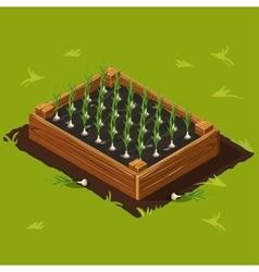 Vegetable Garden Box with Garlic Set 10 vector