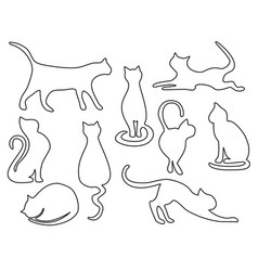 cat one line drawing vector image vector image
