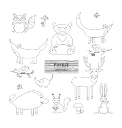 Coloring book Forest animals vector image vector image