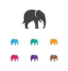 of zoo symbol on elephant icon vector image vector image