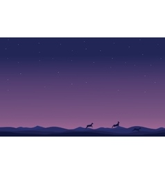 Silhouette of deer at night landscape vector image