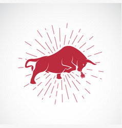 angry bull on white background animal bull vector image