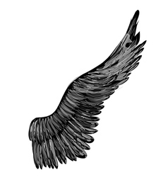 black abstract wing vector image vector image
