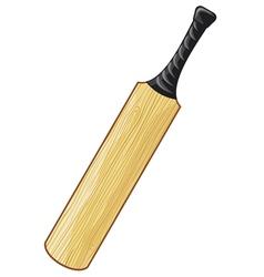 cricket bat vector image vector image