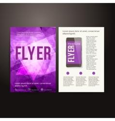 Abstract Brochure Flyer design template vector image