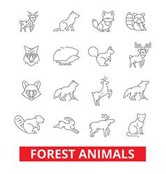 forest animals elk wolf fox rabbit squirrel vector image
