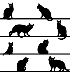 Pattern with cats silhouettes vector