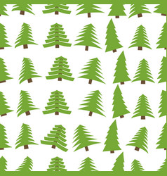 seamless pattern with spruces on white background vector image