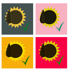 Set of flat sunflowers and seeds symbol isolated vector