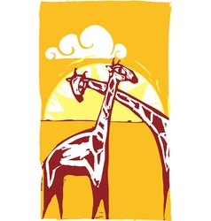 Two Giraffes vector image