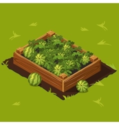 Vegetable Garden Box with Watermelons Set 7 vector