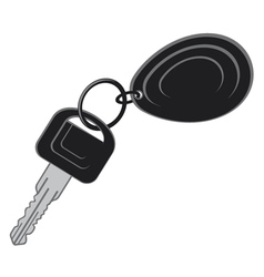 keys from the car vector image vector image