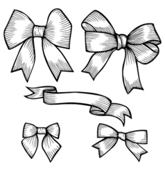 Set of bows hand drawn vector image