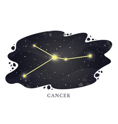 Astrological horoscope sign on night background vector