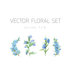 Bright watercolor set of flowers with leaf vector