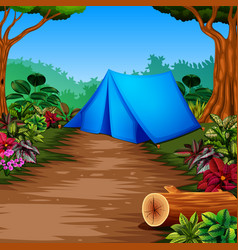 camp in the forest with the beautiful view vector image