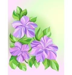 Card with decorative flowers pink and purple vector image