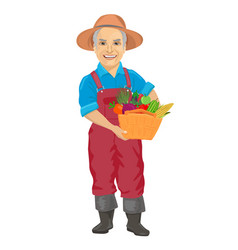 Elderly male gardener with basket of vegetables vector