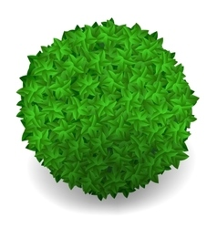 Green Leaves Round Isolated vector image