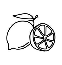Lemon fruit icon design sign vector