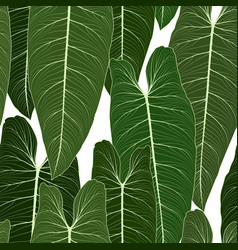 long big tropical green leaves seamless pattern vector image