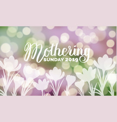 mothering sunday 2019 typography bokeh background vector image