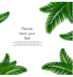 palm leaf background palms leaves for print vector image