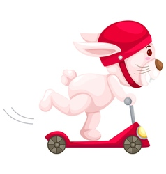 rabbit playing scooter vector image