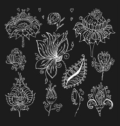 vintage flower design elements vector image