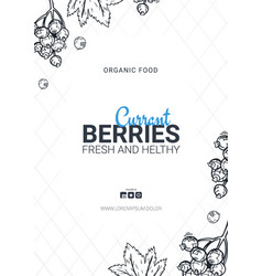 Berries banner with currants food design template vector