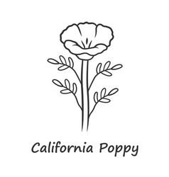 California poppy linear icon papaver rhoeas with vector