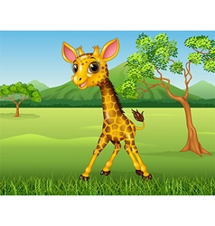 Cute giraffe in the jungle vector