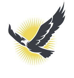 eagle on a background sun vector image