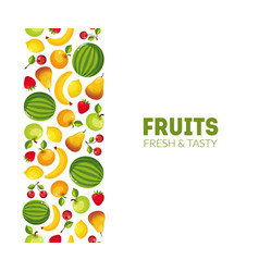 fruits fresh and tasty banner template design vector image