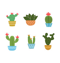 Set of cactus icon collection vector