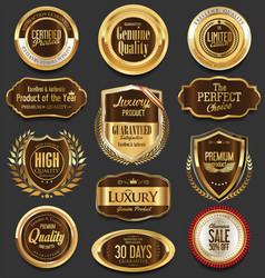 set of retro vintage laurel wreaths and badges vector image