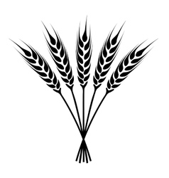 Silhouette ears of wheat icon vector