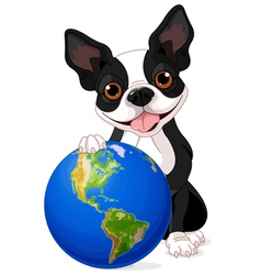 Boston Terrier Earth Day vector image vector image