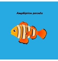 Ocellaris clownfish vector image vector image