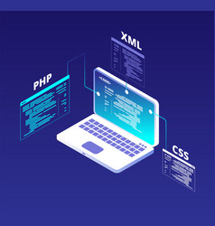 Coding concept website development and app vector
