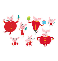 Cute cartoon pigs in chinese clothes isolated on vector