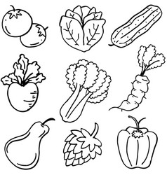Doodle of vegetable food set vector