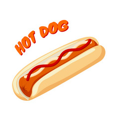 Hot dog with bread sausage ketchup and mustard vector