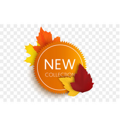 new collection tag autumn sale banner isolated vector image
