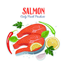 Red fish salmon pieces with vector