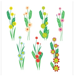 Flowers and leaves on a white background vector image