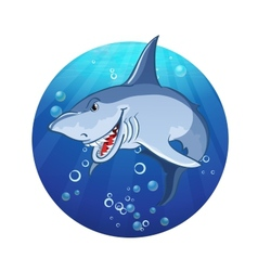 an evil shark vector image