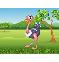 Cartoon ostrich in the jungle vector