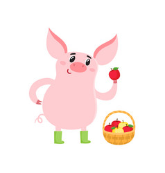 Cute pig with basket of apples isolated on white vector